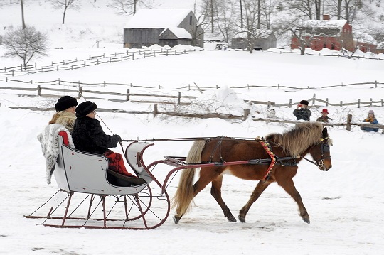 Sleigh Rides, Pony Joering, Horse Sledding, Ranch du cheval d'Or, Expedition Wolf, Dogsledding